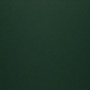 Vert foncé-524