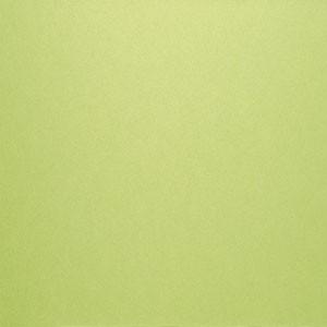 Vert Kiwi-3364