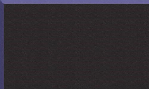Noir biseau violet BR64921